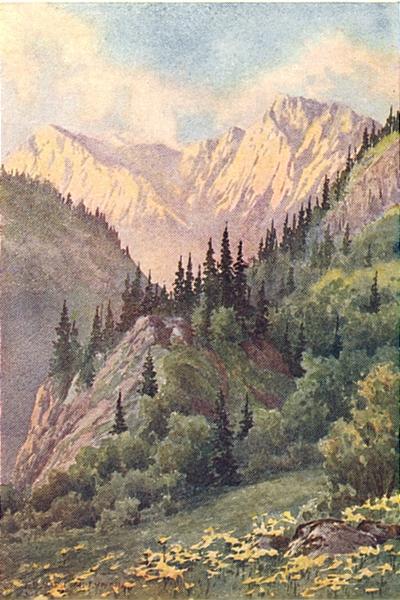 Associate Product KASHMIR. The Tannin Glen, Lidar Valley 1924 old vintage print picture