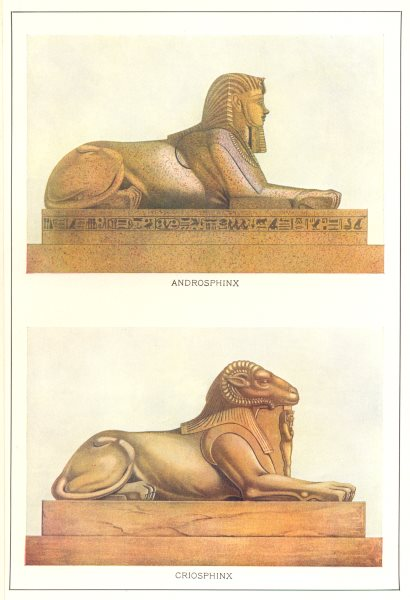 Associate Product EGYPT. Androsphinx; Criosphinx 1907 old antique vintage print picture