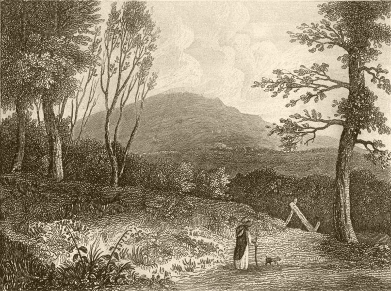 Associate Product DEVON. Bren-tor, Devon. DUGDALE 1845 old antique vintage print picture