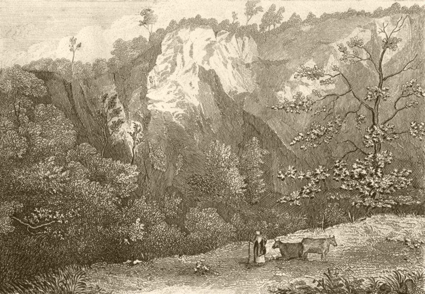 Associate Product DEVON. Near Chudleigh, Devon. DUGDALE 1845 old antique vintage print picture