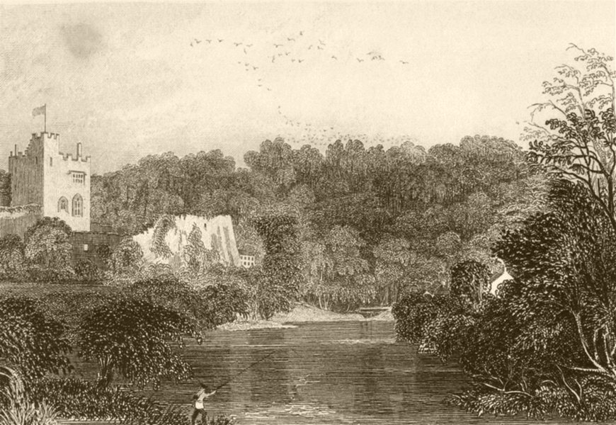 Associate Product WALES. Part of Bala Lake, Merionethshire. DUGDALE 1845 old antique print
