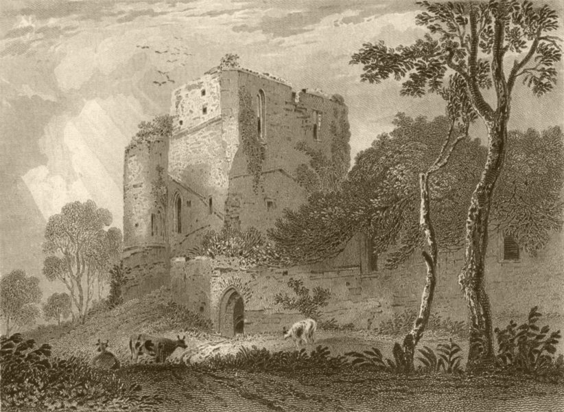Associate Product HEREFORDSHIRE. West Tower of Goodrich Castle. DUGDALE 1845 old antique print