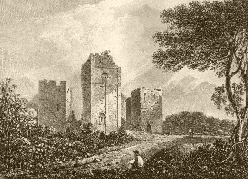 Associate Product HEREFORDSHIRE. Goodrich Castle, Herefordshire. DUGDALE 1845 old antique print