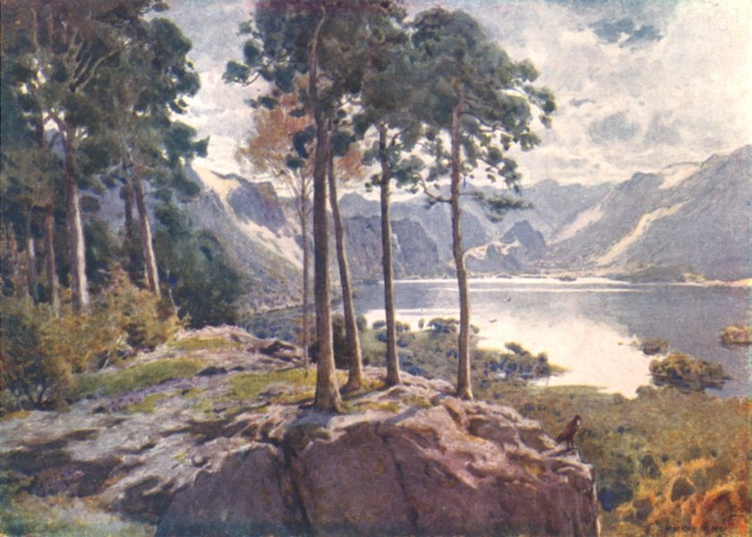 Associate Product CUMBRIA. Lake district. Derwent Water, from Castle head a bright morning 1908