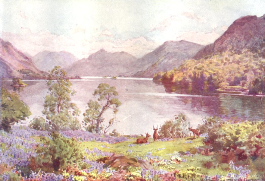 Associate Product CUMBRIA. Lake district. Ullswater, from Gowbarrow Park a Sultry June morn 1908