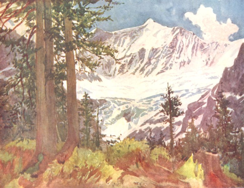 Associate Product SWITZERLAND. Fiescherhorn and the Lower Grindelwald Glacier 1917 old print