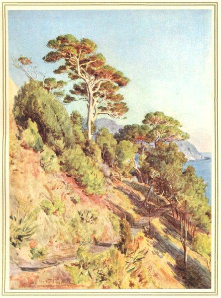Associate Product ITALY. In the Villa Piuma, Sestri Levante 1912 old antique print picture