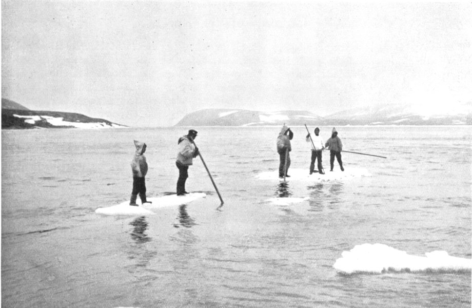 Associate Product ARCTIC. Arctic America. Punting on ice floes; Eskimos killing seals 1900 print