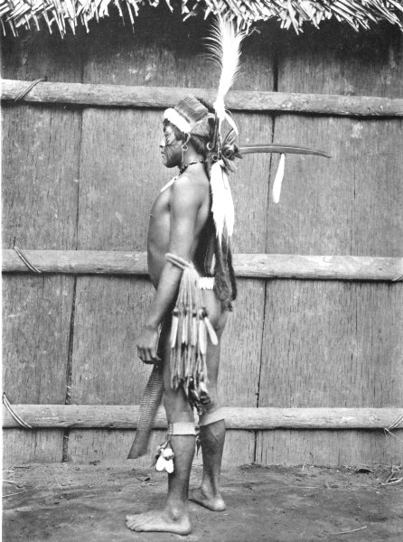 Associate Product BRAZIL. A Tuyuka Indian in Gala Array; Uaupe River. North-west Brazil 1900