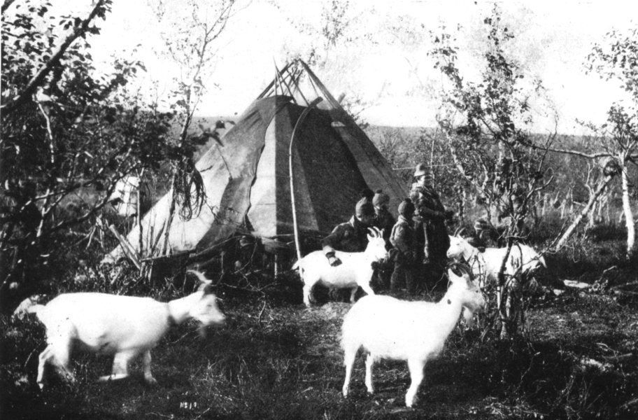 Associate Product FINLAND. A Summer Camp,Lapland;Mosquitoes;leave forests for mountains coast 1900