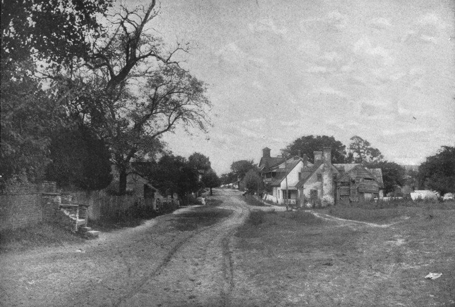 Associate Product VIRGINIA. Village Street in Yorktown 1907 old antique vintage print picture