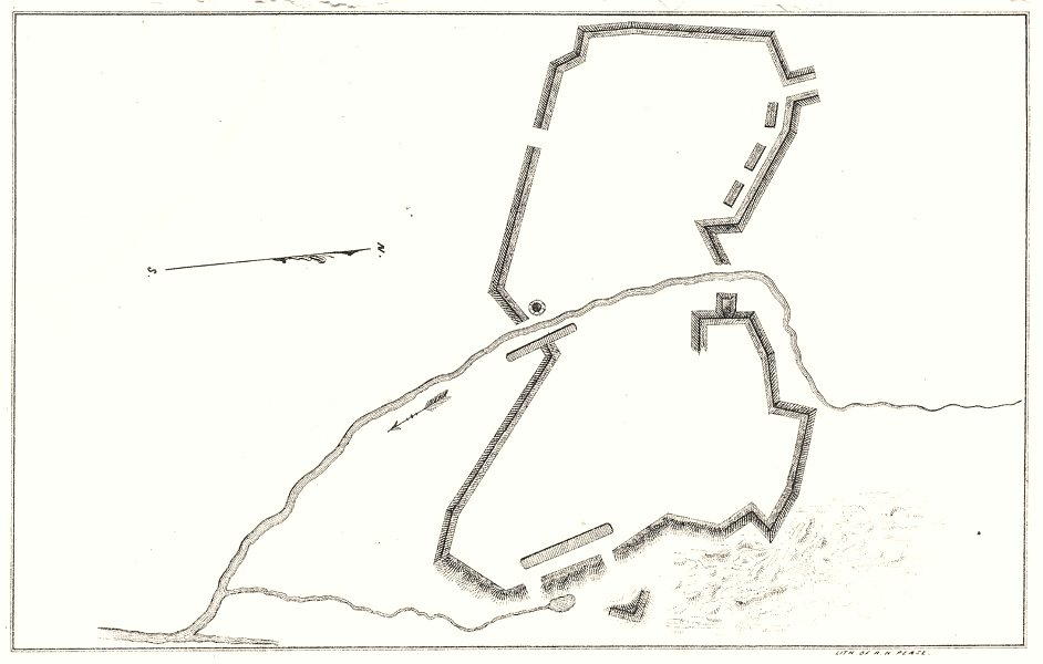 Associate Product NEW YORK STATE. A fort plan 1850 old antique vintage map chart