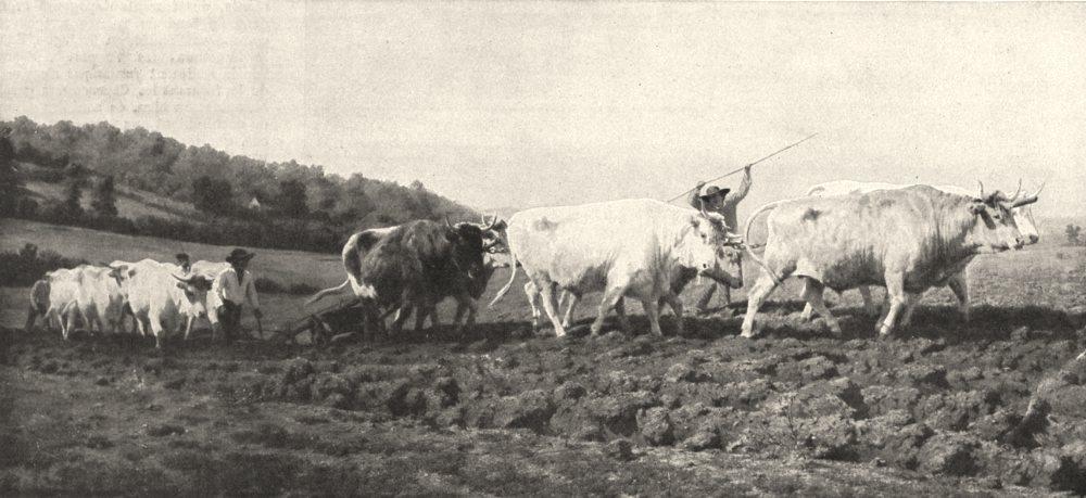 Associate Product FRANCE. Exploitation Du Sol. Le ( (Labourage) ) Par Rosa Bonheur 1900 print