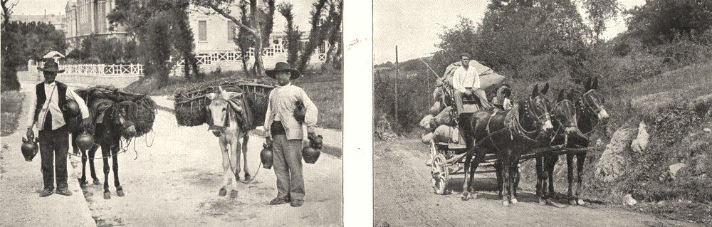 Associate Product PYRÉNÉES- ATLANTIQUES. Pays Basque. Merchants Gargoulettes; Attelage Mules 1900