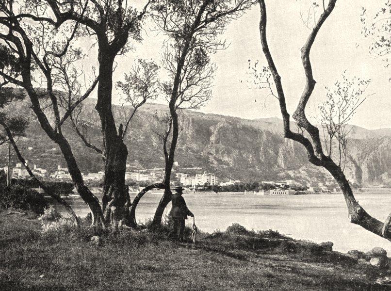 Associate Product ALPES- MARITIMES. La Baie de Beaulieu Vue a Travers Les Oliviers 1900 print