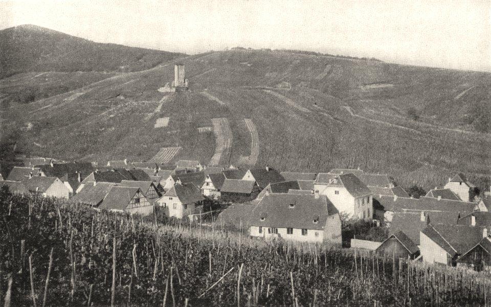 Associate Product ALSACE. Vignoble Alsacien 1900 old antique vintage print picture