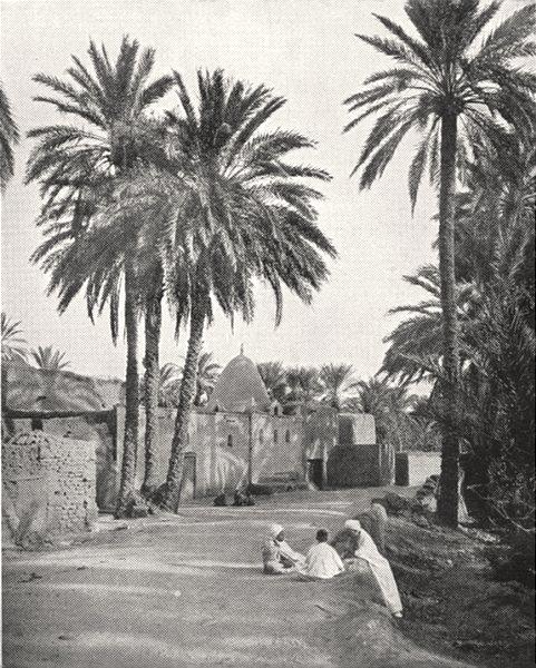 Associate Product ALGERIA. Biskra. Marabout de Sidi- Lhassen 1900 old antique print picture