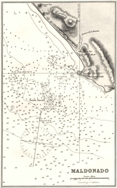 Associate Product MEXICO. Sea chart of Maldonado 1881 old antique vintage map plan