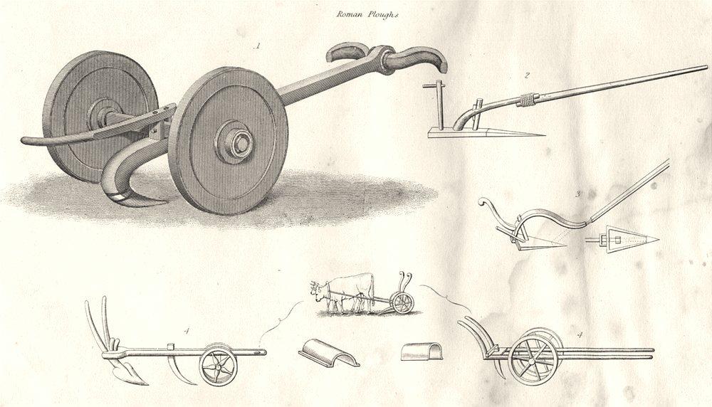FARMING. Agricultural Implements; Roman Ploughs 1880 old antique print picture