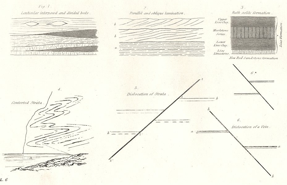 Associate Product GEOLOGY. Lenticular; Parallel Oblique; Bath Oolite; Contorted Strata 1880