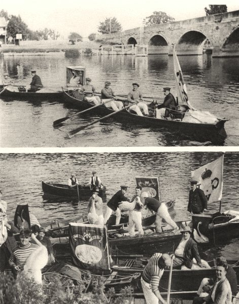 Associate Product LONDON.Ancient custom Dyers Vintners city guilds. Swan upping on the Thames 1926