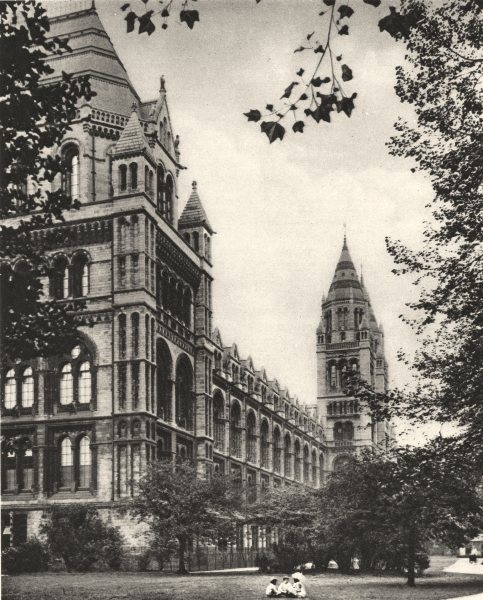 Associate Product LONDON. Romanesque front of the Natural History Museum 1926 old vintage print