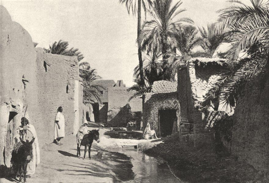 Associate Product ALGERIA. Biskra. Quartier Medjenie 1895 old antique vintage print picture
