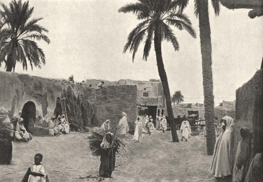 Associate Product ALGERIA. Biskra. Oasis de Sidi Okba 1895 old antique vintage print picture