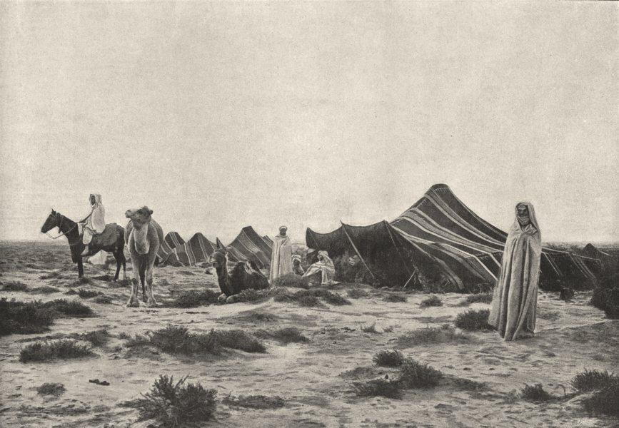 Associate Product ALGERIA. Campement Désert 1895 old antique vintage print picture