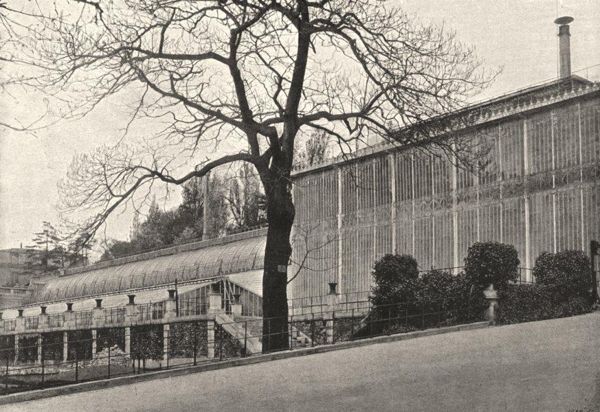 Associate Product PARIS. Muséum. Serres 1895 old antique vintage print picture