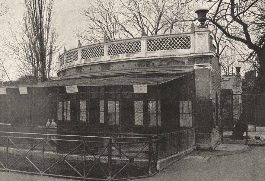 PARIS. Muséum. Volière 1895 old antique vintage print picture