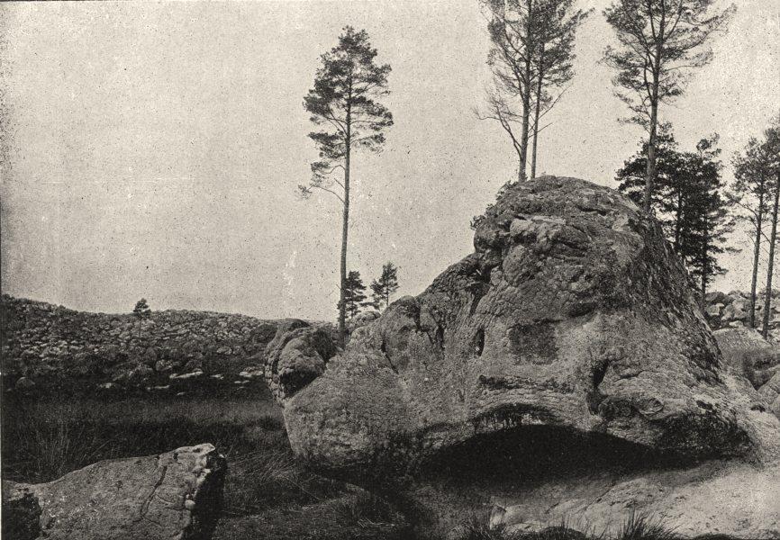 Associate Product SEINE- ET- MARNE. Forêt de Fontainebleau. Cerbère du Désert 1895 old print