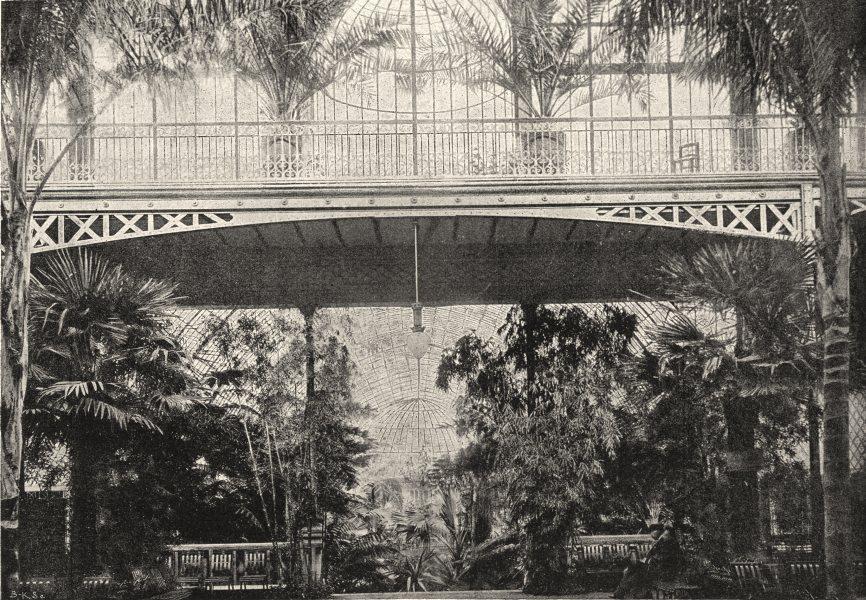 Associate Product PARIS. Jardin D'Acclimatation. Palmarium 1895 old antique print picture