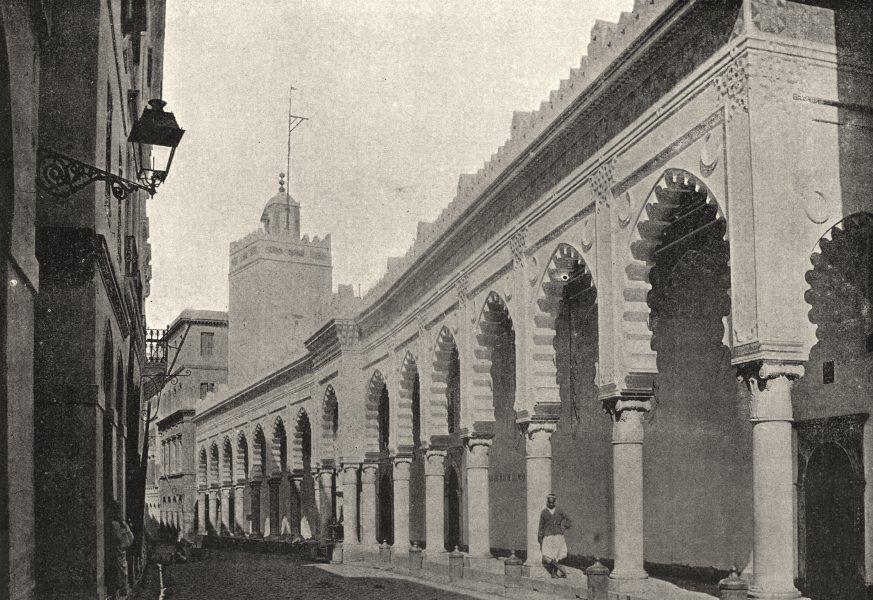 Associate Product ALGERIA. Algiers (Alger) . Rue de Marine 1895 old antique print picture