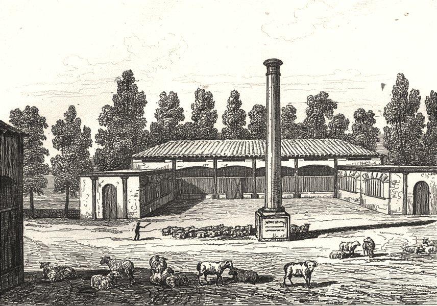 LANDES. Bergerie impériale des Landes 1835 old antique vintage print picture