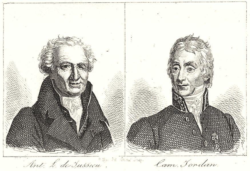 Associate Product RHÔNE. Ant L. de Jussieu; Cam Jordan 1835 old antique vintage print picture