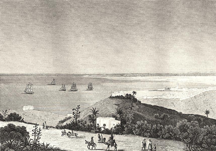 Associate Product ALGERIA. État d'Alger. Algiers (Alger)  1835 old antique vintage print picture