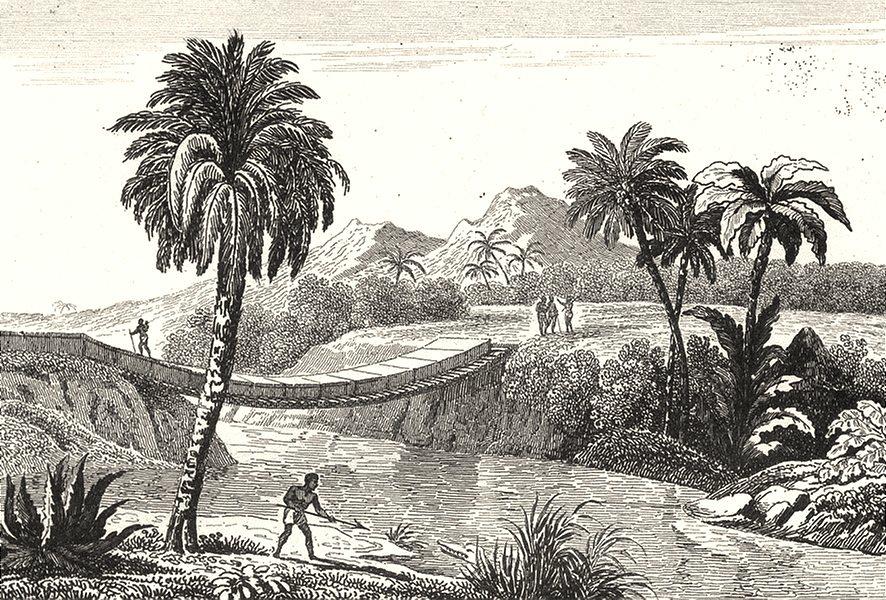 Associate Product SENEGAL. Sénégal et Gorée. Pont suspendu au Sénégal 1835 old antique print
