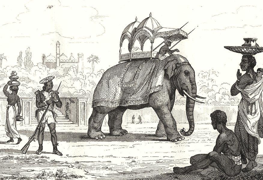 Associate Product INDIA. Inde Française. Costumes; Cypaie; Eléphant caparaconné; Indiens 1835