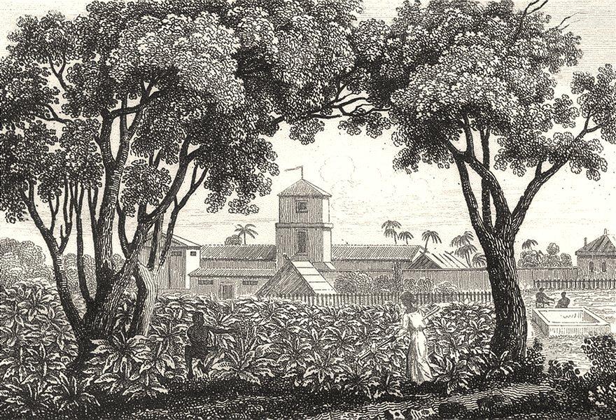 Associate Product WEST INDIES. Guadeloupe. Une Habitation 1835 old antique vintage print picture