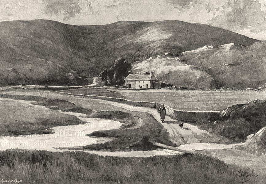 Associate Product WALES. The First house on the Severn. Blaenhafren 1901 old antique print