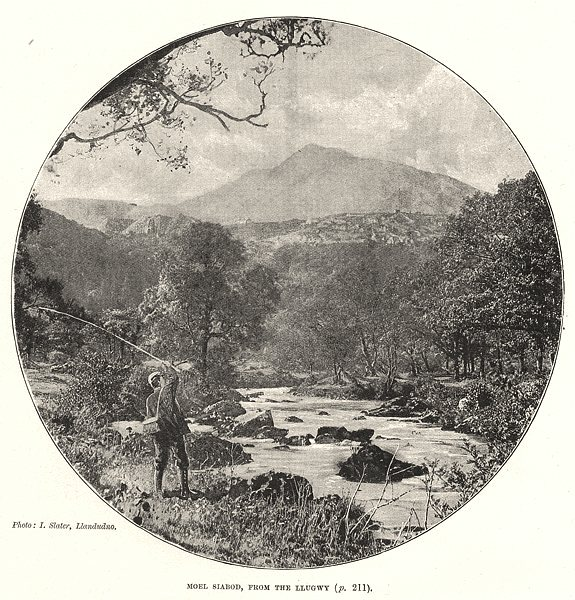 WALES. Moel Siabod, from the Llugwy 1901 old antique vintage print picture