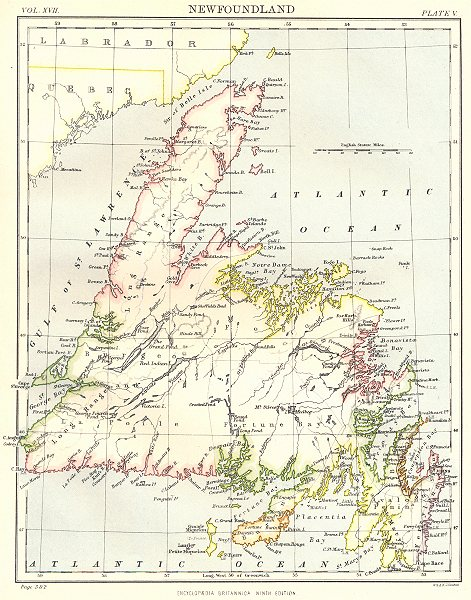 Associate Product NEWFOUNDLAND. Canada. Britannica 9th edition 1898 old antique map plan chart
