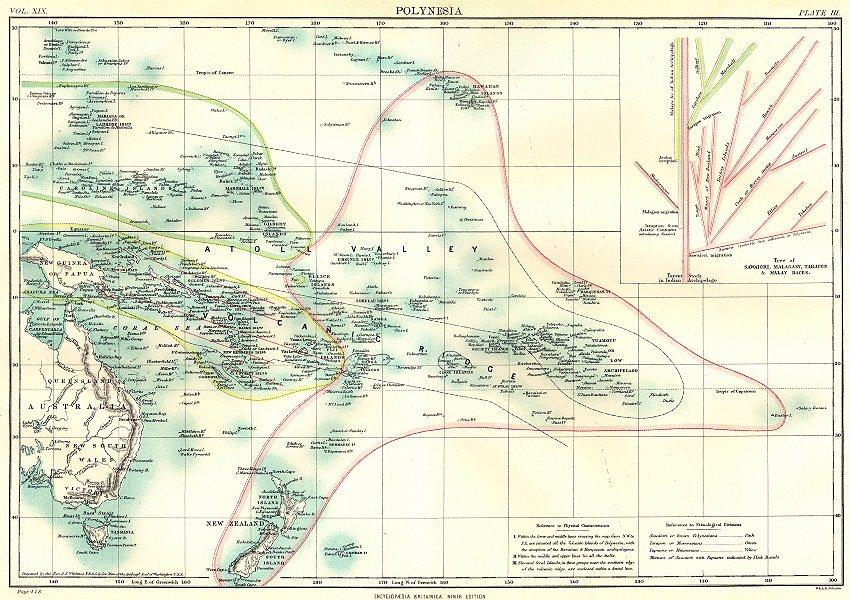 Associate Product POLYNESIA OCEANIA. Inset tree of Sawaiori Malagasy Tarapon Malay races 1898 map