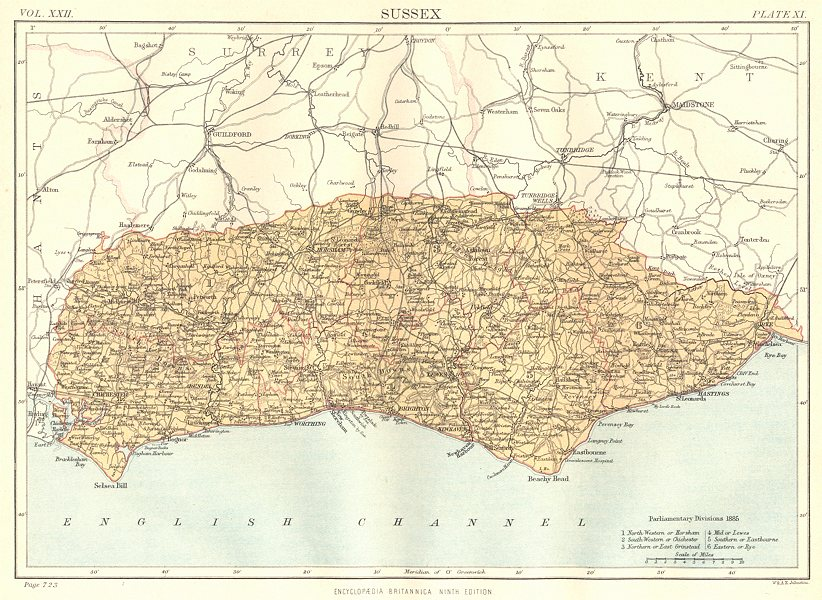 Associate Product SUSSEX. Showing 1885 Parliamentary divisions. Britannica. County map 1898