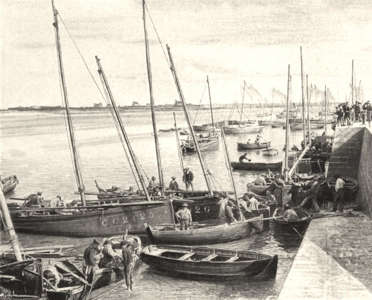 Associate Product MORBIHAN. Le port, á Port-Maria. SMALL. 1903 old antique vintage print picture