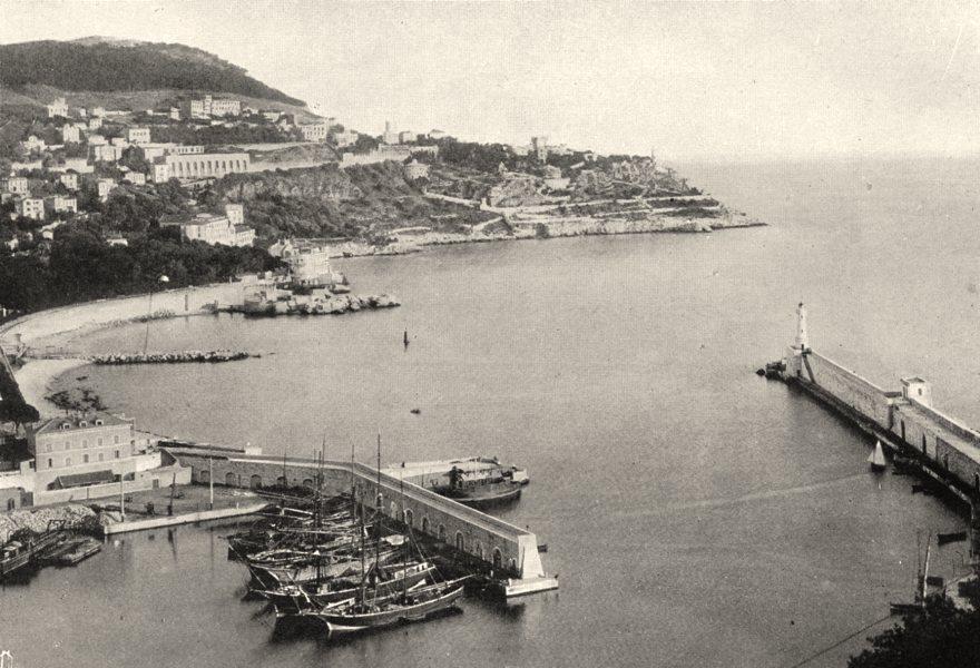 Associate Product ALPES-MARITIMES. Le port de Nice 1903 old antique vintage print picture