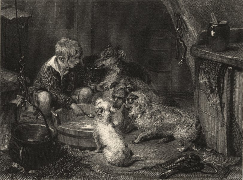 Associate Product DOGS. 'Too Hot'. Several Dogs waiting to eat. Landseer (Edward Jesse) 1888
