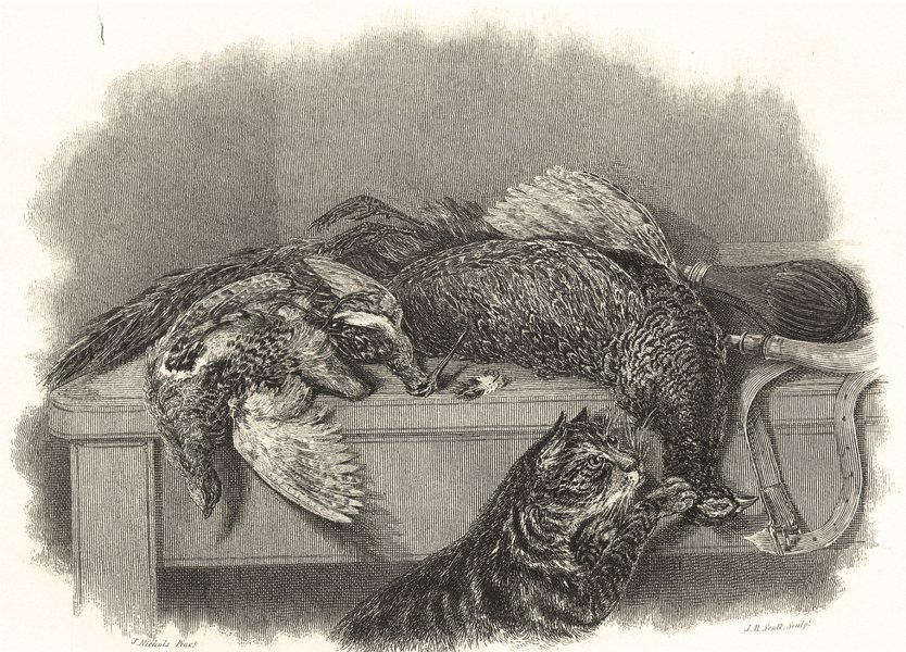 Associate Product CATS. Cats. Cat Investigating shot game birds. Dead Game 1838 old print