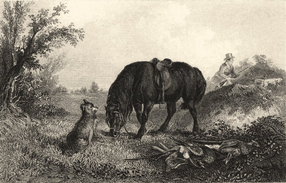 Associate Product DOGS. 'In Charge'. Dog guarding Horse. Man shooting (Edward Jesse) 1888 print